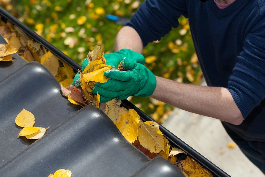 Removing leaves from gutters to prevent clogging