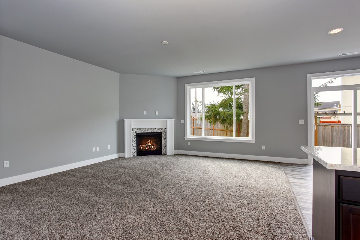 gray unfurnished house