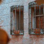 vine-like-window-bars