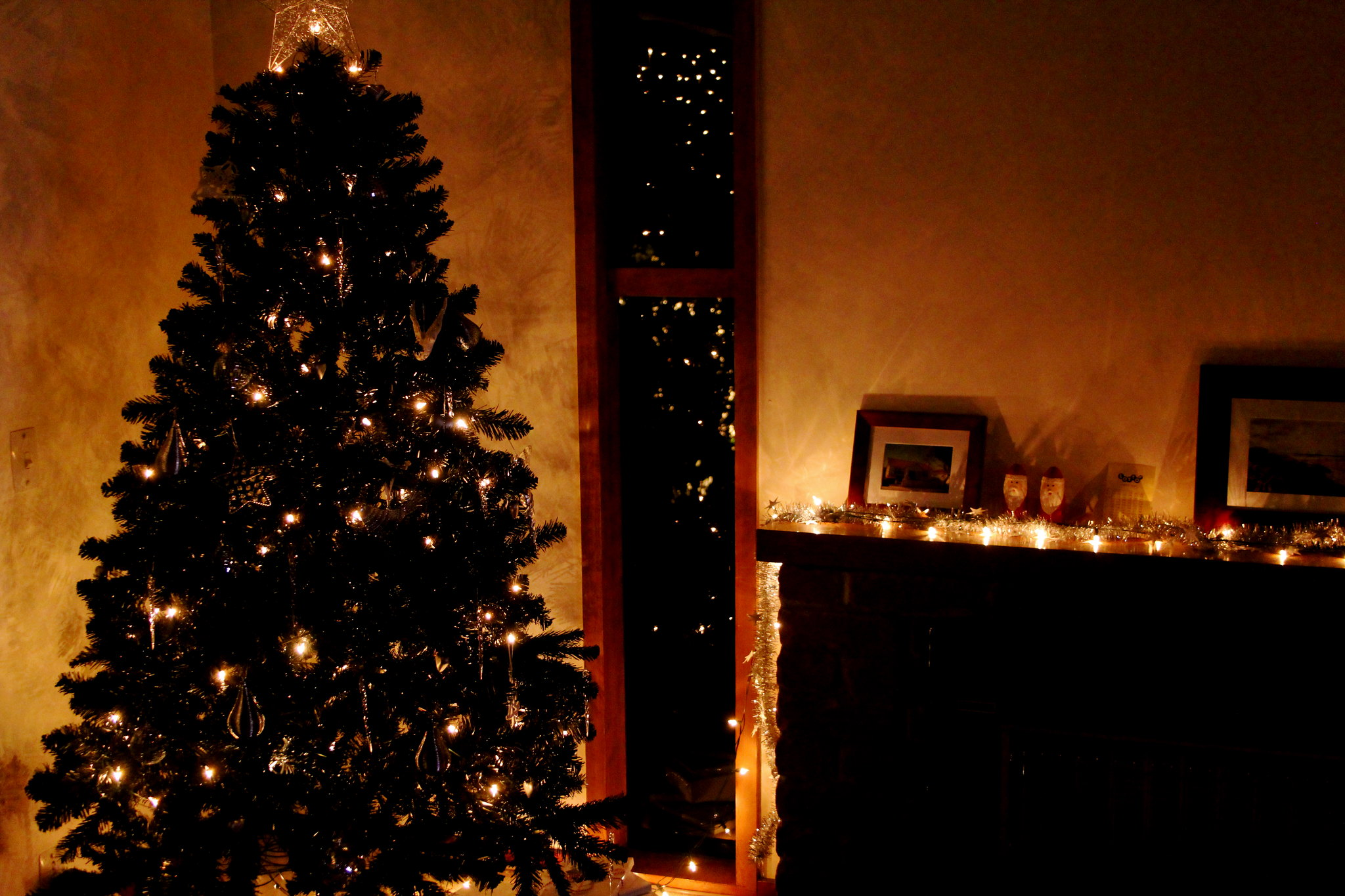 black christmas tree in a room
